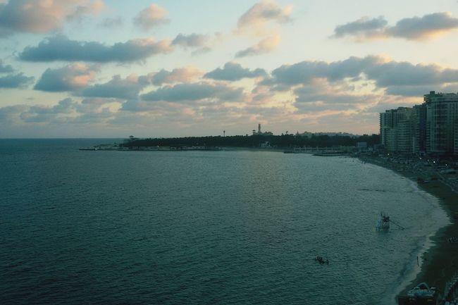 Sea Sunrise Alexandria Egypt Trees