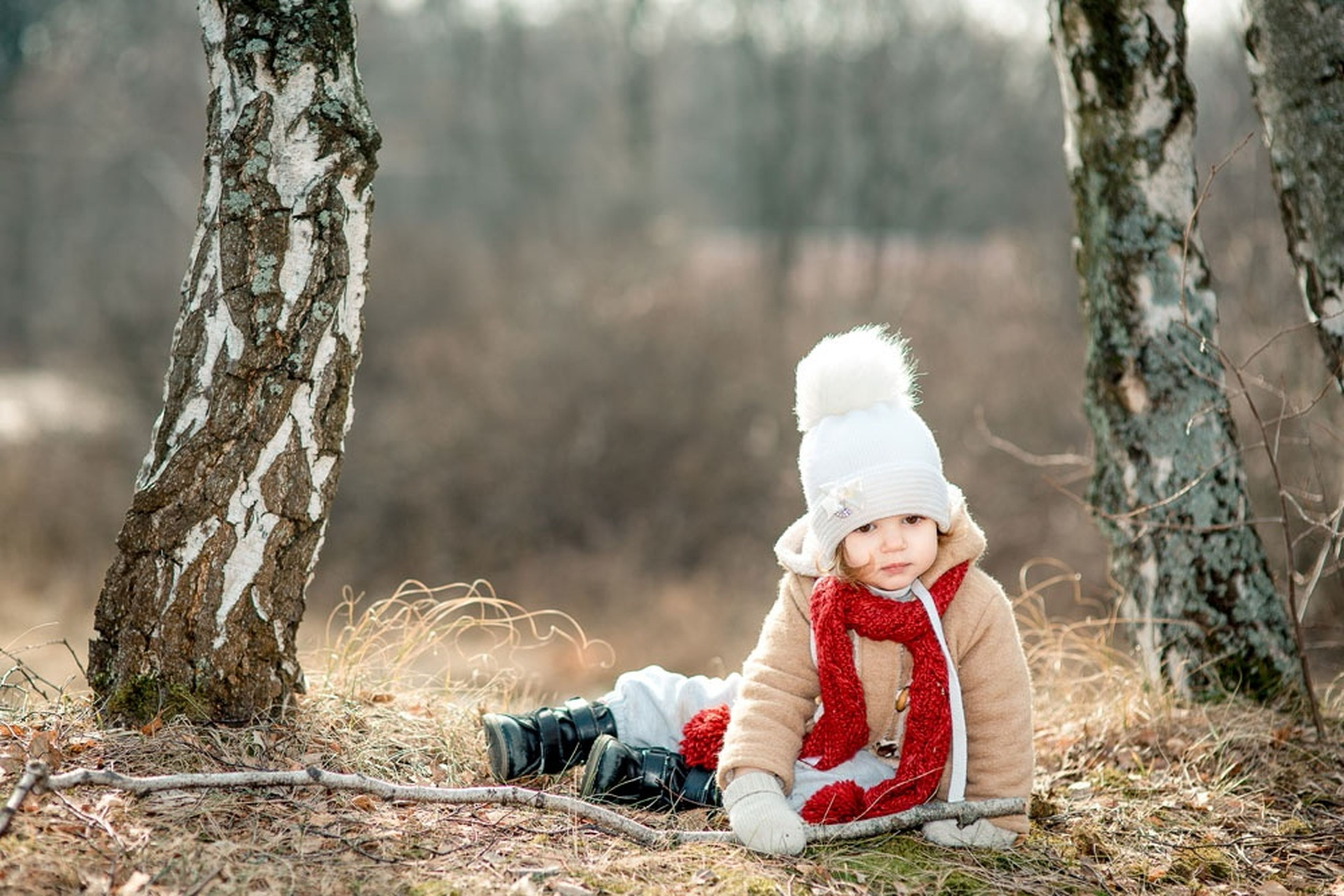 tree, tree trunk, focus on foreground, forest, wood - material, day, sitting, outdoors, childhood, nature, red, front view, full length, hat, rear view, lifestyles, leisure activity, woodland