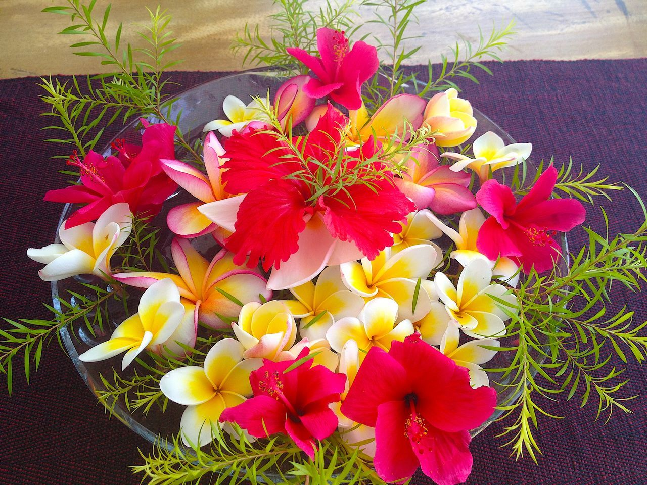 Bright Colours Bright Flowers Close-up Colours Day Elegant Exotic Flower Exotic Flower Arrangement Flower Flower Arrangement Flower Head Fragility Freshness Natural Beauty Nature No People Orchid Petal Plant Red And Yellow Flower Table Arrangement Table Flower