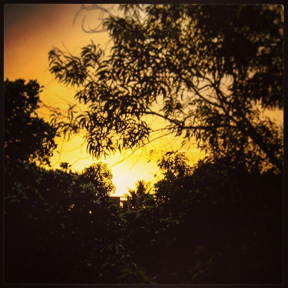 Sun set At Pallekelle . Nature best photo