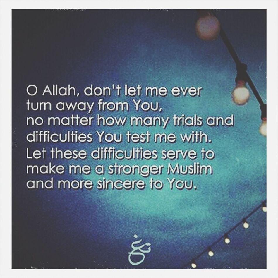 Say He Allah Is One Muslim Alhamdulillah Aamiin