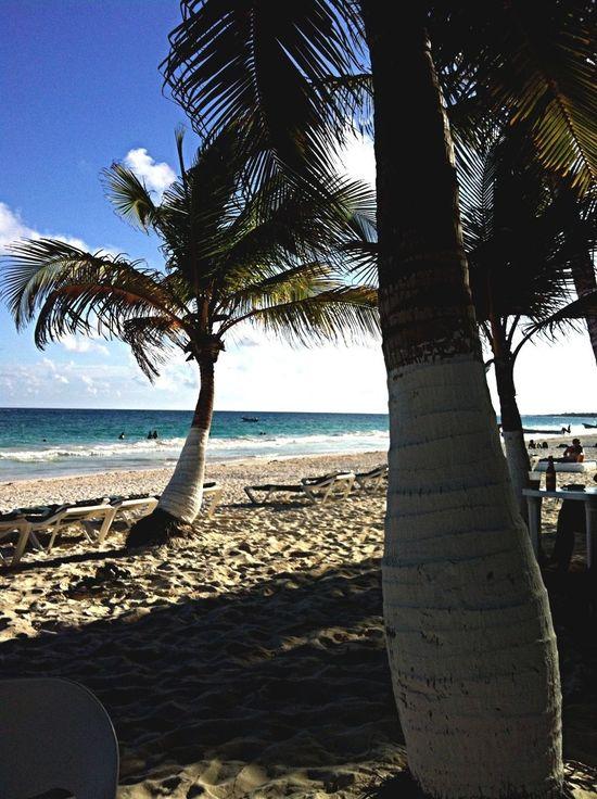 Enjoying The Sun Holiday Mexico