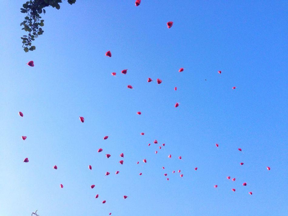 Beautiful stock photos of heart, Balloon, Blue, Celebration, Clear Sky