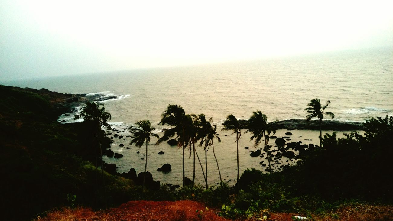 Scenic beauty😎. Hello World Goadiaries First Eyeem Photo