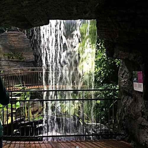 Water Waterfall Green Muse Trento