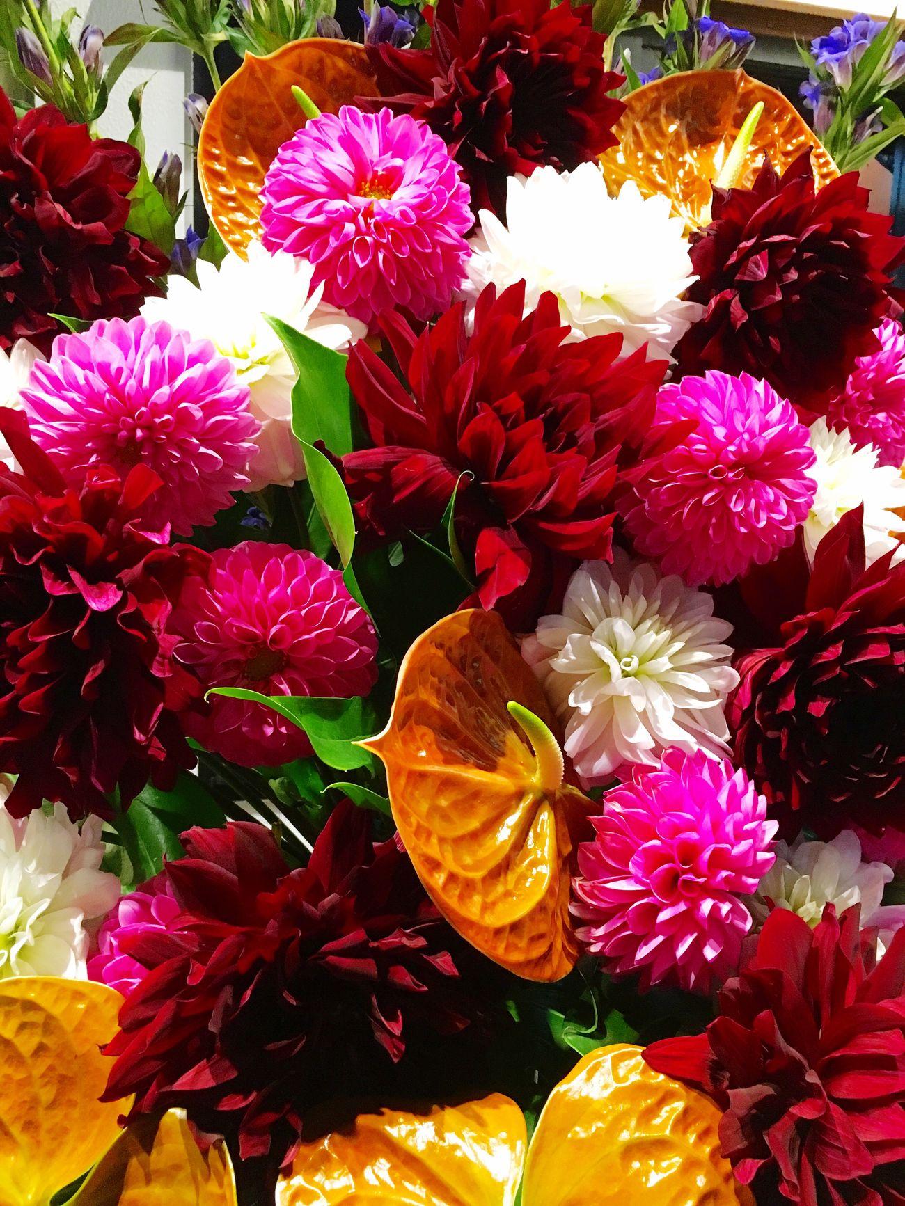 花束 Flower