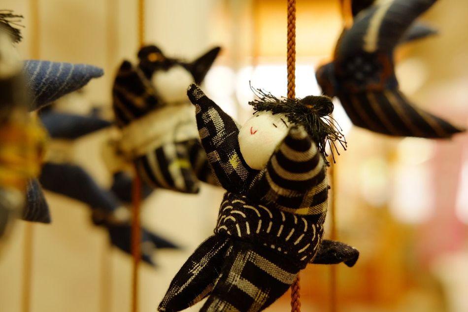 Focus On Foreground Japanese Culture Japanesedoll Hinamatsuri Miyagi Dolls Toy Cute No People Close-up Animal Wildlife Insect Day Outdoors