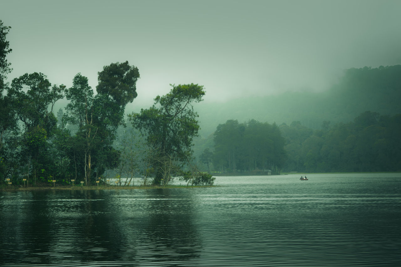 Tree Water Fog Nature Lake Reflection Outdoors Tranquility Landscape Beauty In Nature Rural Scene Scenics Mountain Beauty Freshness Travel Landscapes Outdoor The Great Outdoors - 2017 EyeEm Awards First Eyeem Photo Tree Area Cloud - Sky Green Color Growth