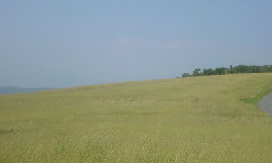 The Essence Of Summer Japan Nature Japan Nature Landscape Japan Steep Steppe Refreshing Stepp Japane Plateau Plateau Wind Glass Wind Glass Nature Nature_collection Summer Steppe