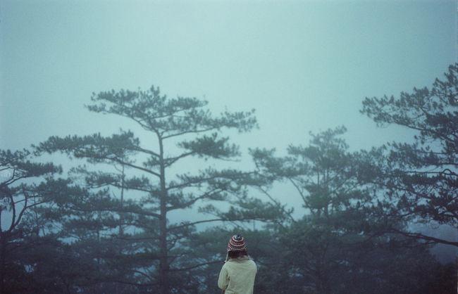 135 35mm Back Blue Film Girl Mist Solitude
