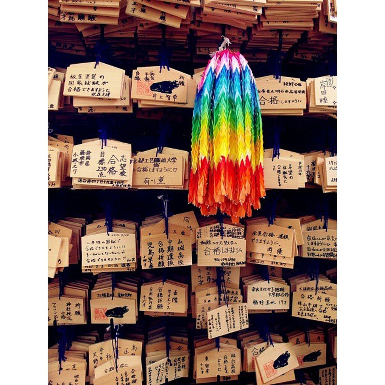 二条城 德川幕府 日本 京都 繪馬 千紙鶴 祈福 Kyoto Japenesestyle Japanesehouse Japen Pray Colorful