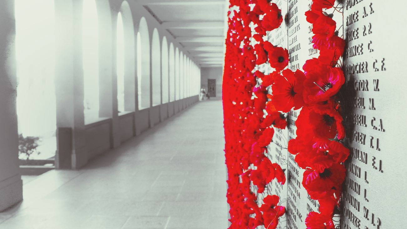 Lest we forget. Australia Canberra ANZAC War Memorial Poppy Poppy Flowers Lestweforget
