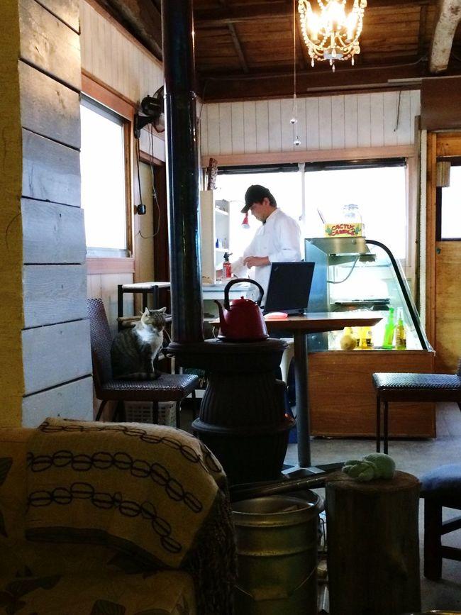 Today :) Cafe Time 九十九里 ストーブの近くを占領してる猫ちゃんが可愛い♡