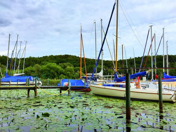 landing stage with sailboats Boat Boats Boats And Water Boats⛵️ Cloud - Sky Day Harbor Landing Stage Marina Mast Moored Moored Boats Nature Nautical Vessel No People Outdoors Sailboat Sailing Boat Sailing Boats Sailingboat Sky Tranquil Scene Tranquility Water Yacht