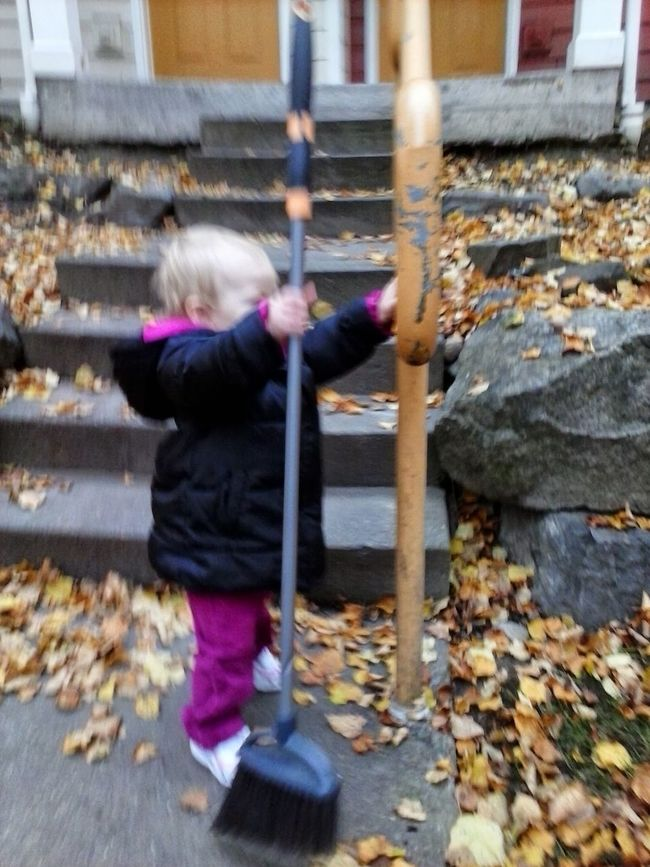 My 1 year old Granddaughter and I went on an adventure and explored the Autumn fun. Autumn Autumn Leaves Blonde Girl Childhood Day Exploring New Ground Fall Fall Beauty Fall Leaves Focus On Foreground Full Length Holding Leisure Activity Outdoors Person Rear View Season  Standing Street Toddler  Toddlerexploration Toddlerlife Toddlertasks Toddleryears Walking