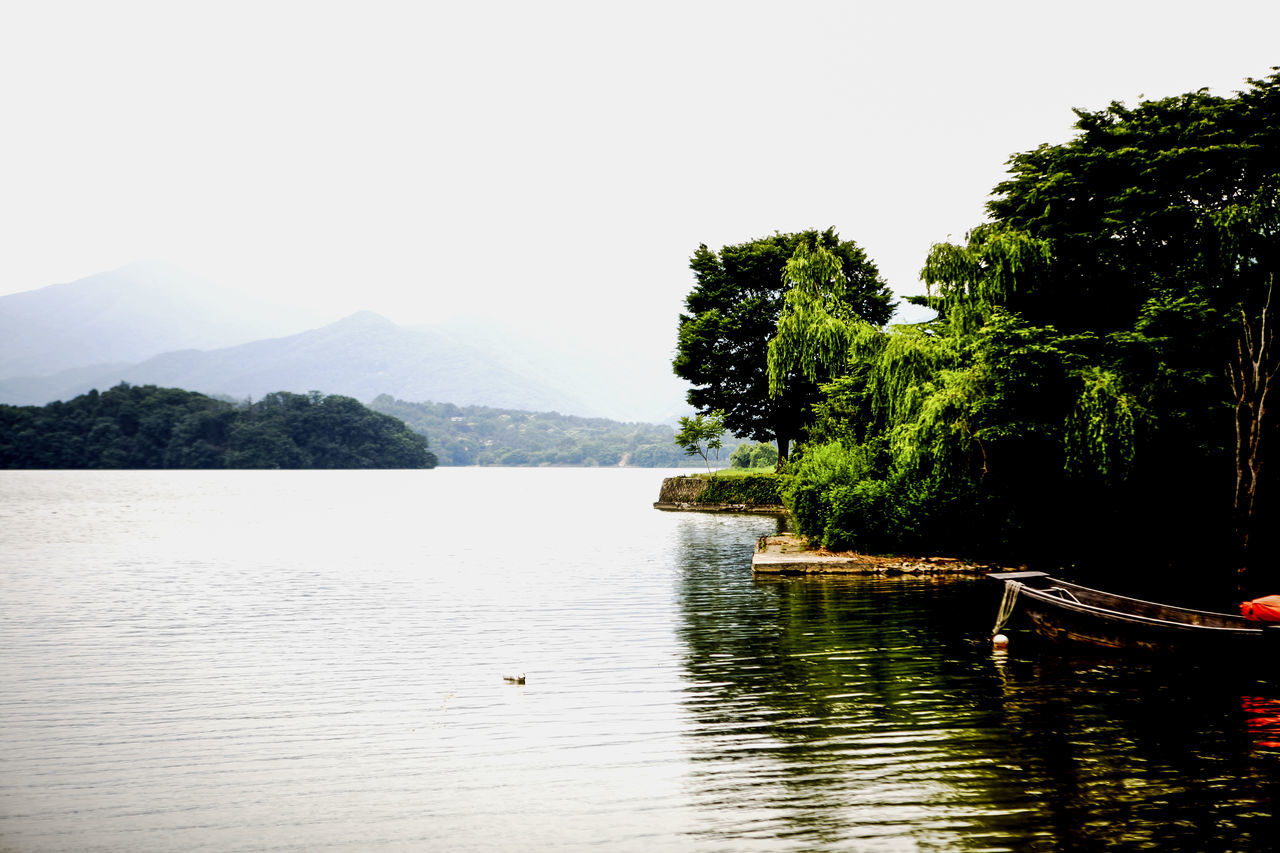 tree, water, nature, beauty in nature, lake, tranquility, waterfront, scenics, no people, tranquil scene, mountain, day, growth, clear sky, outdoors, nautical vessel, sky