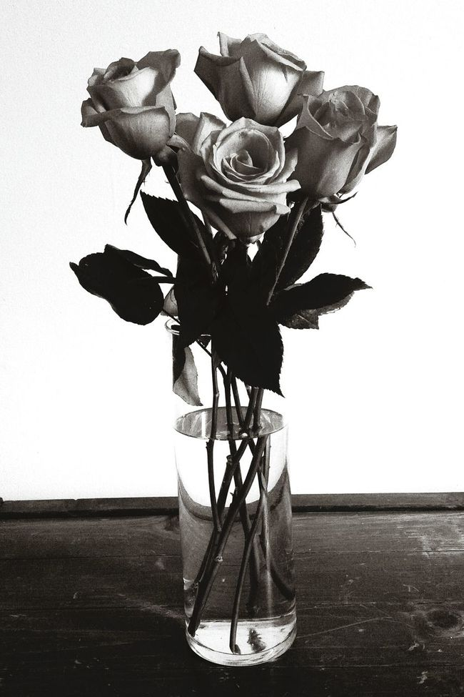 Roses Roses🌹 Rose🌹 Flowers Vase Six Half Dozen Blackandwhite Black And White Monochrome Love Petals Leaves Stems Contrast Showing Imperfection Rustic Scratched Wood Worn Out Old Monochrome Photography