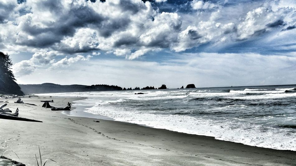 Olympic Peninsula Shi Shi Beach The Places I've Been Today Go West Things I Saw Today Pacific Ocean
