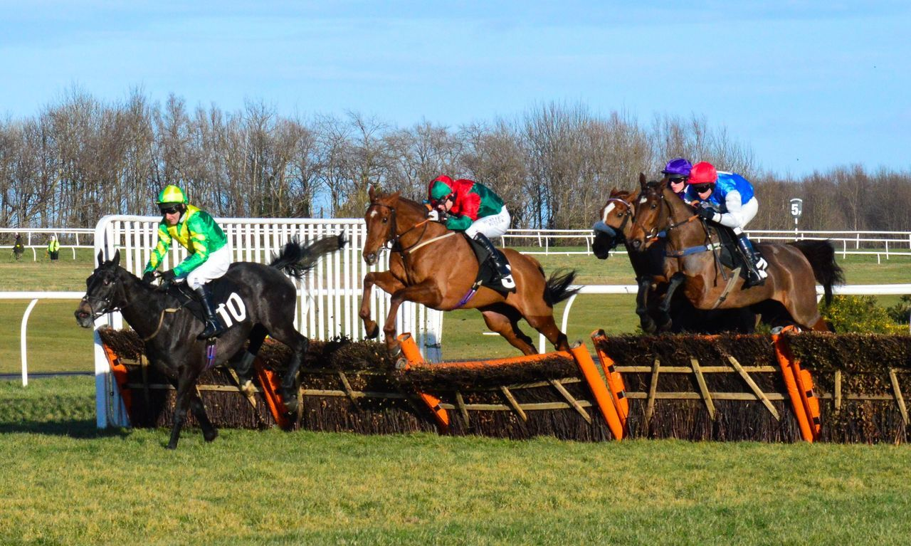 Horse Racing Horse Racing Racecourse Equine Equinephotography Sports Photography Musselburgh