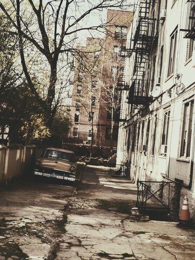 Vintage Set RahimNoel Rahim NYC NY New York Beautiful Vivid