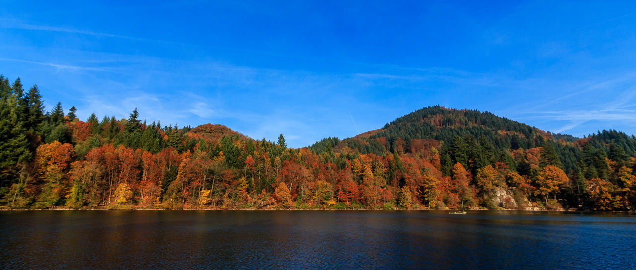 herbstlicher Bergsee in Bad Säckingen Autumn Autumn Colors Bad Säckingen Bergsee Black Forest Herbst Lake Landscape Nature No People Outdoors Scenics Schwarzwald Sky Sunset Tree Water