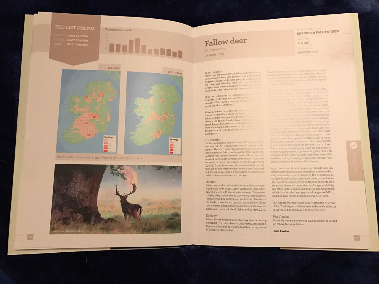 Published in Atlas of Mammals of Ireland Text No People Indoors  Day Mammal Outdoors Deer Stag Animals In The Wild Antler One Animal Animal Themes