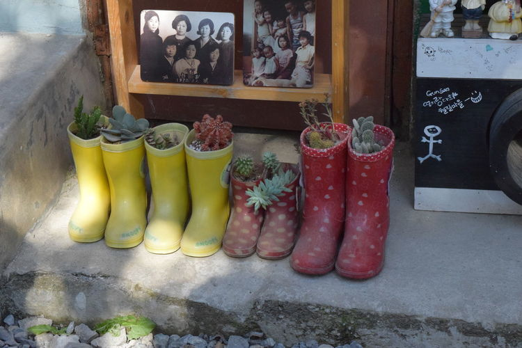 Camera Day Flame Flower Kitchen No People Outdoors Photo Rainboots Red Rubber Boot Window Yellow