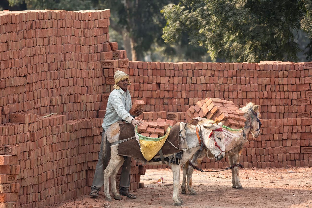 The business of transporting bricks. City of Agra January 13, 2017. Working Animal People EyeEm Best Shots - People + Portrait Travel Photography Travel Indian Documentary Incredible India India Check This Out People Photography Storytelling Tradition Lifestyles Streetphotography Street Photography