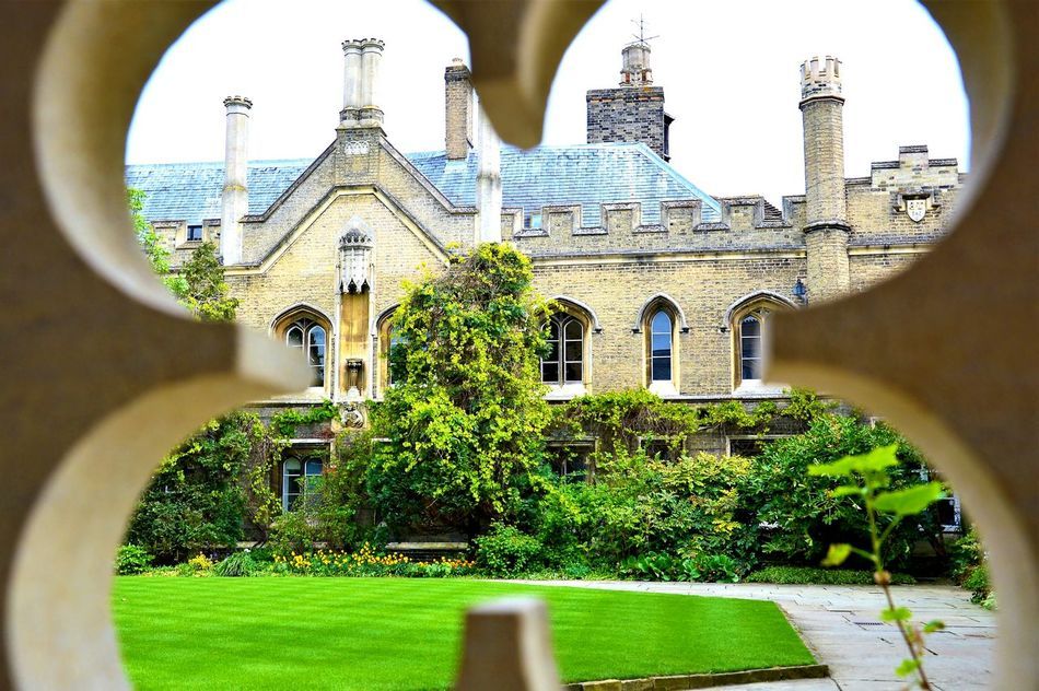 Architecture Built Structure Building Exterior Arch No People Day Statue Outdoors Tree City Sky Close-up Close Up Lovecambridge Cambridge Cambridge University Cambridgeshire Particular Cambridgetown