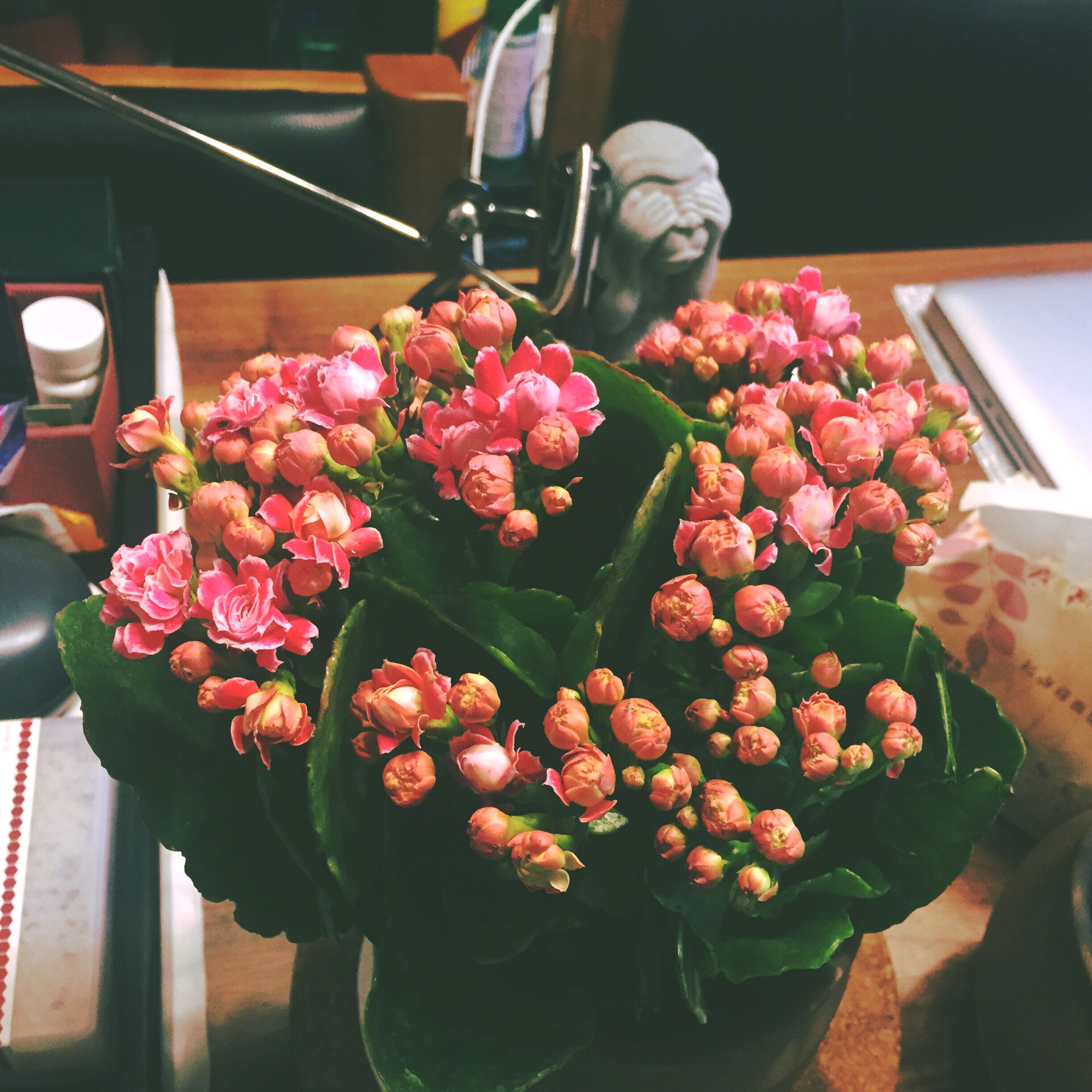 freshness, flower, indoors, close-up, red, fragility, table, vase, food and drink, high angle view, focus on foreground, food, petal, no people, bunch of flowers, growth, plant, pink color, home interior, still life