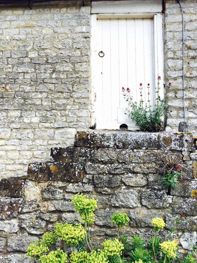 English countryside at it's most beautiful side! 😍 England Old Buildings Countryside Bricks Brick Wall Door Steps Flowers Nature Vs Concrete