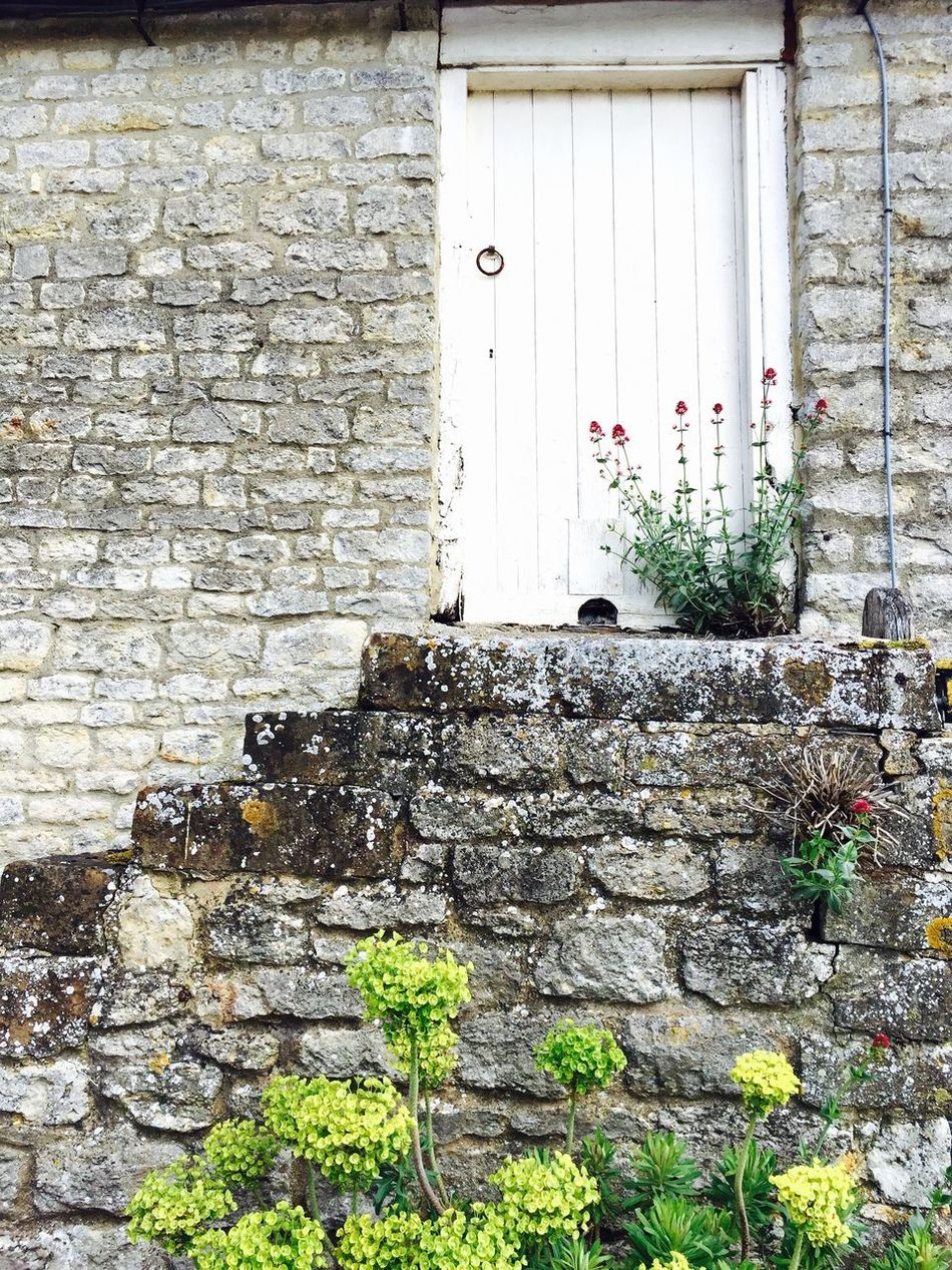 English countryside at it's most beautiful side! 😍 England Old Buildings Countryside Bricks Brick Wall Door Steps Flowers Nature Vs Concrete Adapted To The City