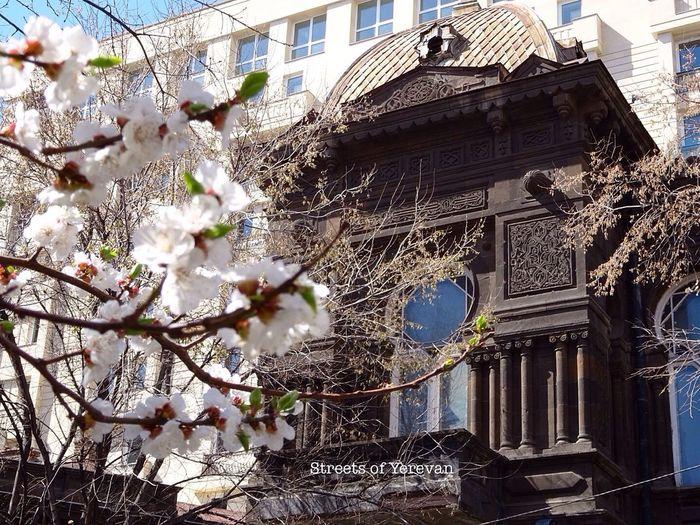 Here Belongs To Me Yerevan Armenia Architecture StreetsofYerevan