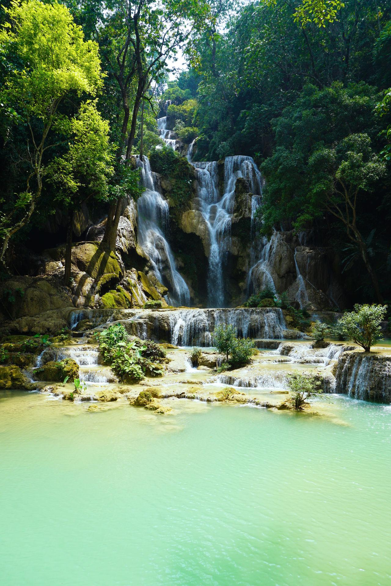 2017 Beauty In Nature Calcareous Sinter Day Forest Kuang Si Falls Kuang Si Waterfalls Landscape Laos Luang Phabang Luang Prabang Nature Outdoors Pool Scenics Tranquil Scene Tranquility Travertine Tree Water Waterfall World Heritage クアンシーの滝 ラオス ルアンパバーン