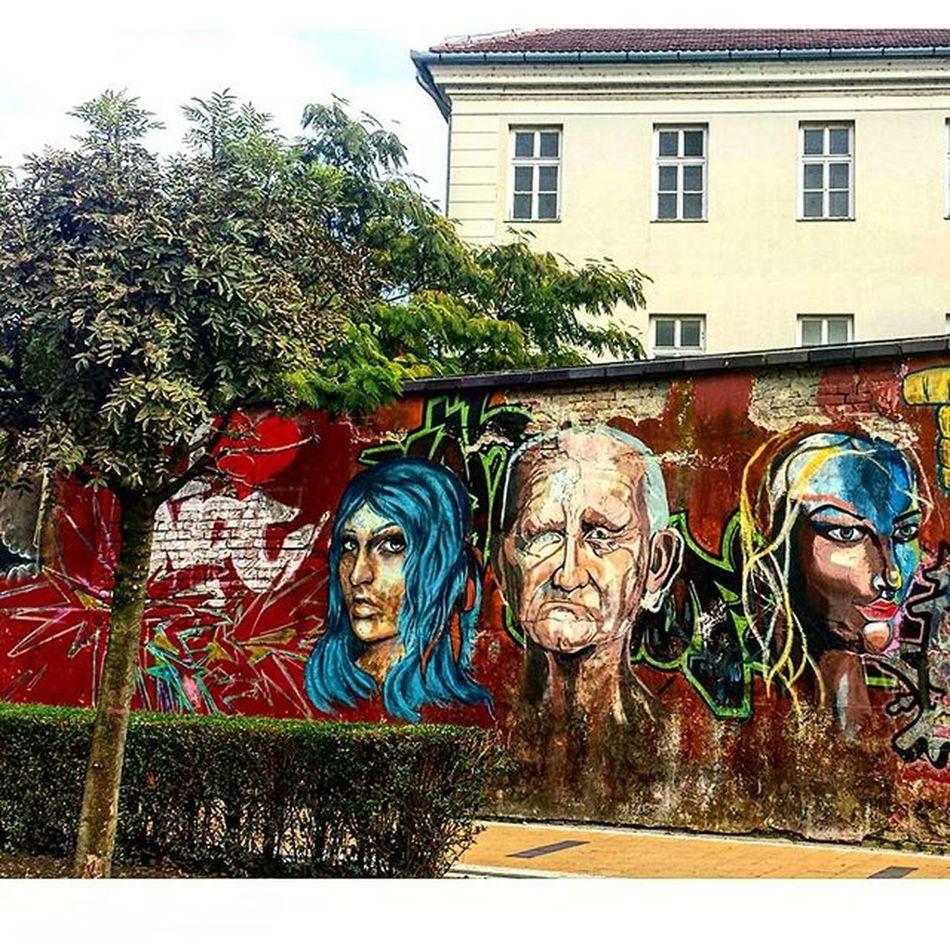 Graffiti of Novisad Streetsofnovisad Art on Walls Graffitiart Artstreet Streetartwork Streetart Wallart Novi_Sad Visitnovisad