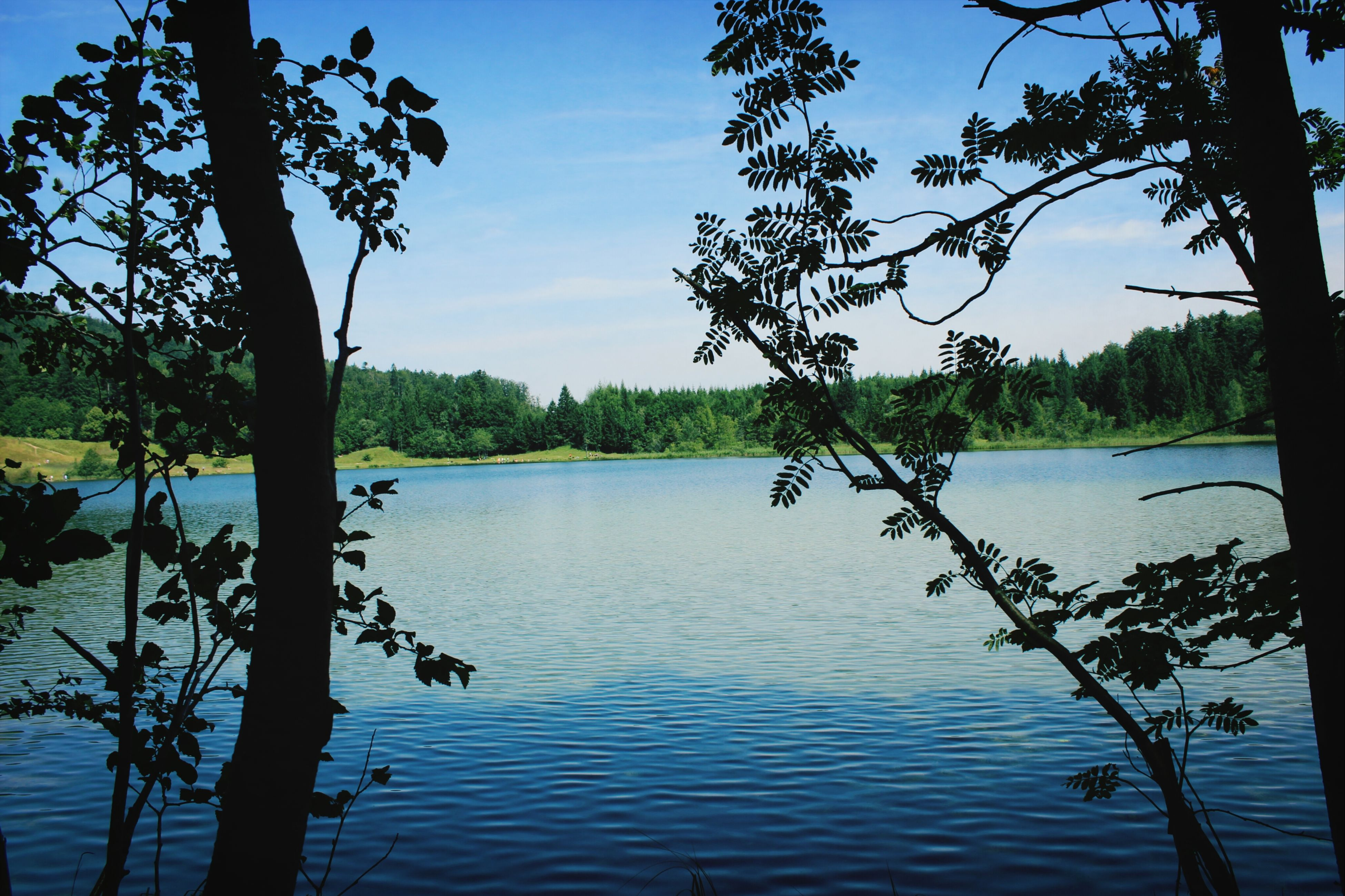 paradise Gmunden Laudachsee Enjoying Life Relaxing