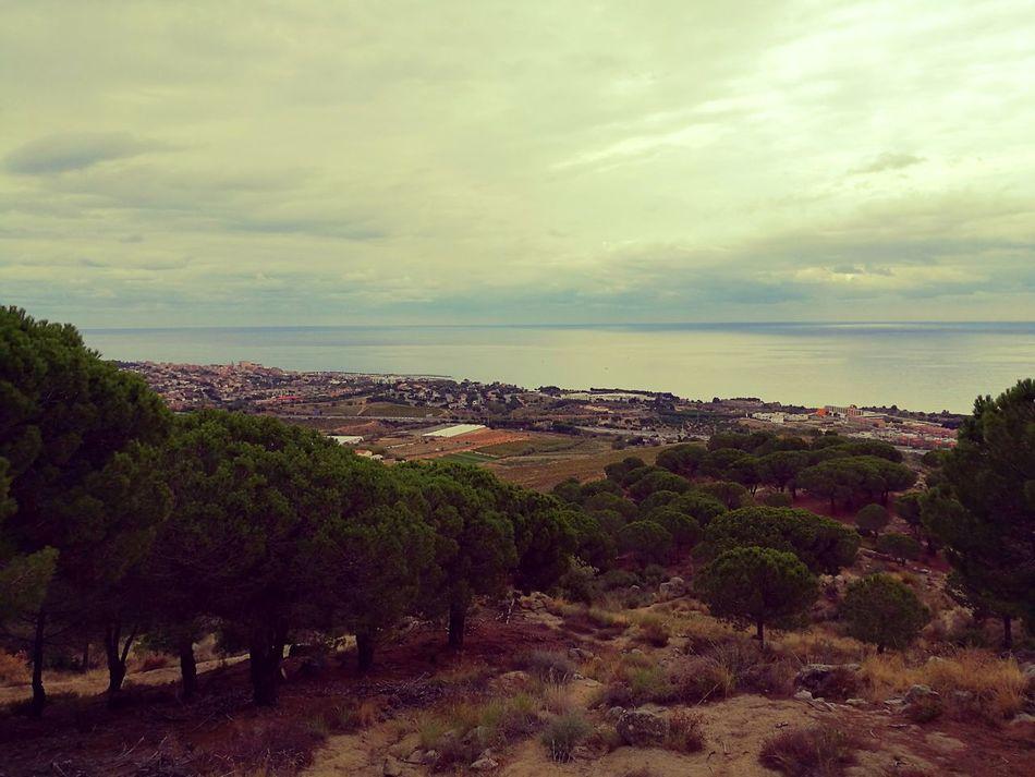 Catalunya Sea Mar Maresme Montains    Paisaje Paisajes Paisajes Naturales Pinos El Mar Paisaje Natural Vistas Al Mar Mar Y Montaña Mar Y Tierra El Mar En Calma