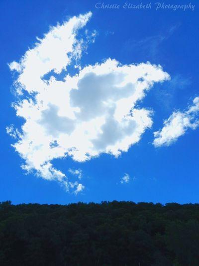 Lynxville Dam Lynxville, Wisconsin Wisconsin Wisconsin Life Summer In Wisconsin Clouds Clouds And Sky Cloudporn Sky And Clouds Cloud Cloud_collection  Cloud And Sky Cloud Porn Cloud - Sky Cloudy Cloudsandsky Sky Skyporn Skylovers Sky_collection Sky Porn Trees Hills Hillside Blue