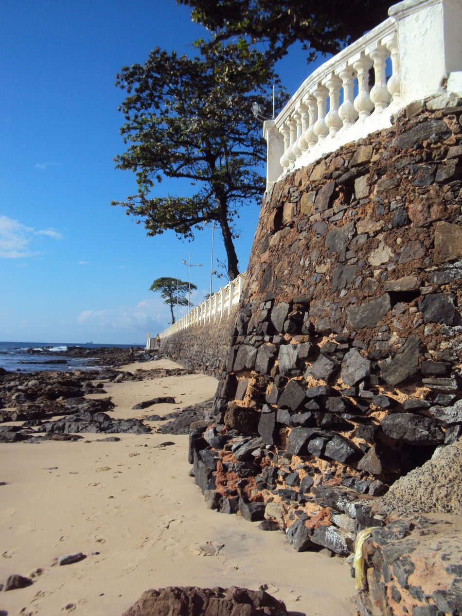 Praia Do Forte, Bahia - Brasil Stone Wall Beach Sand Blue Sky Tree Nature
