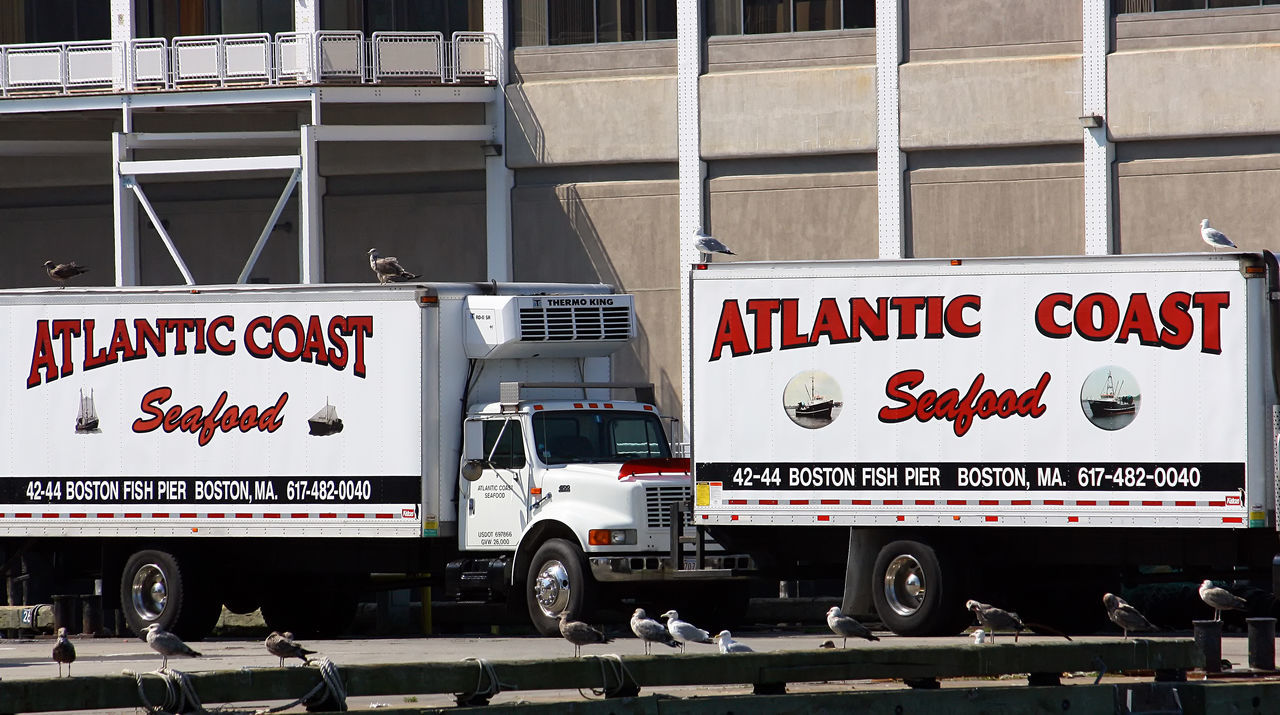 Atlantic Coast Fisheries Boston, Mass Architecture Building Exterior Cannery Communication Day Land Vehicle No People Outdoors Red Text Seafood Company