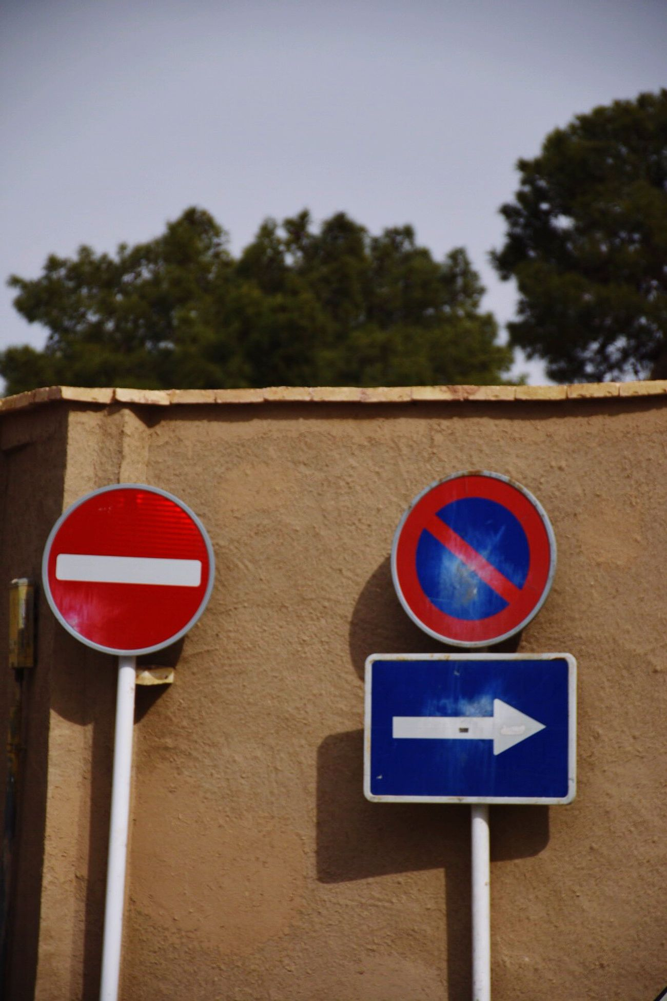 Communication Road Sign Red Guidance Do Not Enter Sign Circle Day No People No Parking Sign Outdoors Tree Blue Built Structure Low Angle View Architecture Growth Close-up Building Exterior Sky
