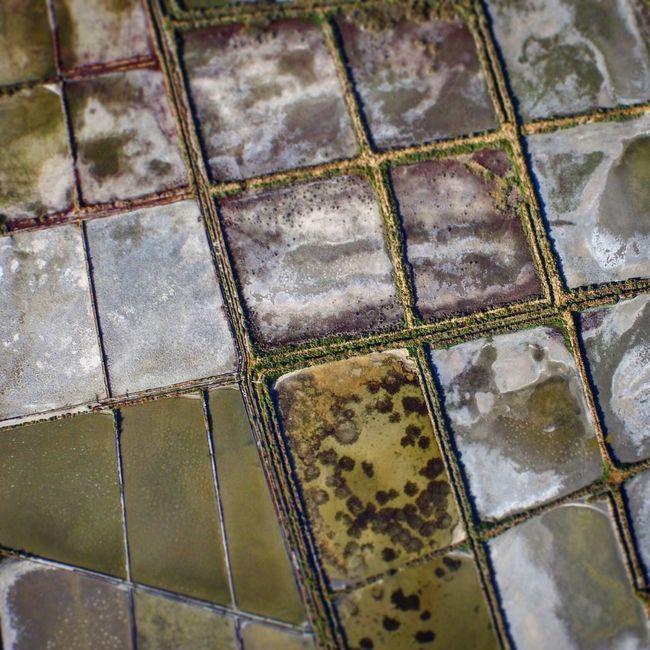 Marais salants de Porto-Vecchio Corse Porto-Vecchio Marais Salants Marais Corsica Salt First Eyeem Photo