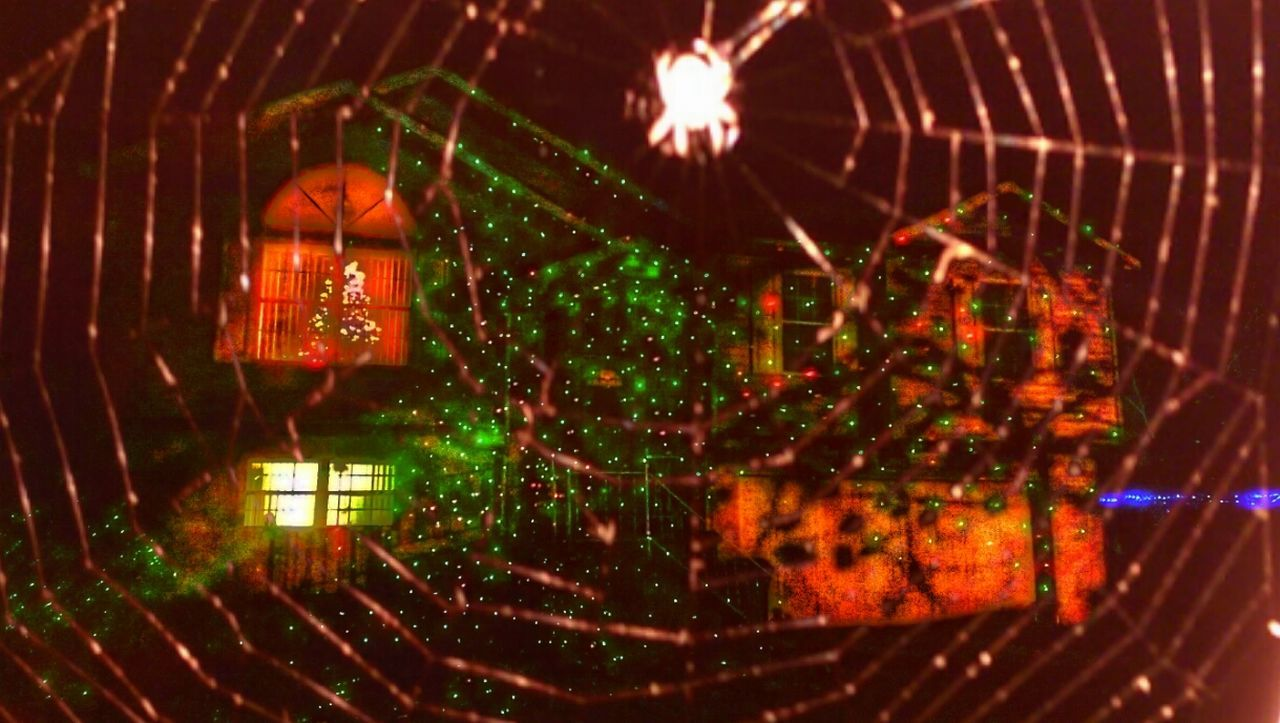 """https://youtu.be/s1tAYmMjLdY """"We'll have Halloween On Christmas and in the Night, we'll wish this never ends...And as I stared, I counted the WEBS from all the Spiders catching things and eating their insides like indecision to call you..."""" The Impurist Webporn Year Of The Spider EyeEm Nature Lover Mother Vs Nature No People Christmas Decoration Through The Web Alien Light I'm On The Outside, Looking In. Your Weekly Web Report Spiders For Steven Musical Photos Lyricalartistry Nightmares And Dreamscapes Seeing Red Again Happy Holidays with Planet Dirt"""
