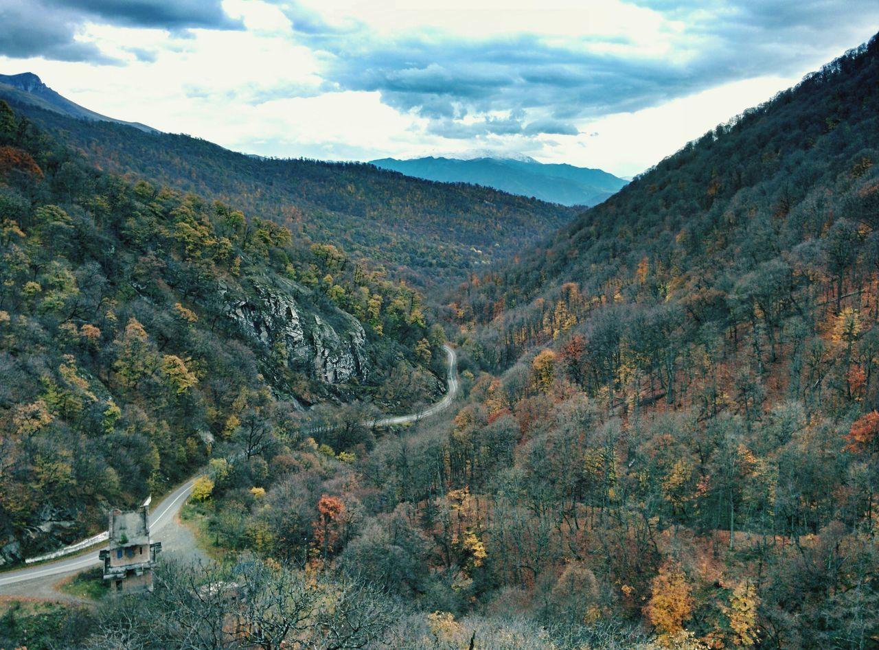 Autumn Colors Nature Highlands Landscape