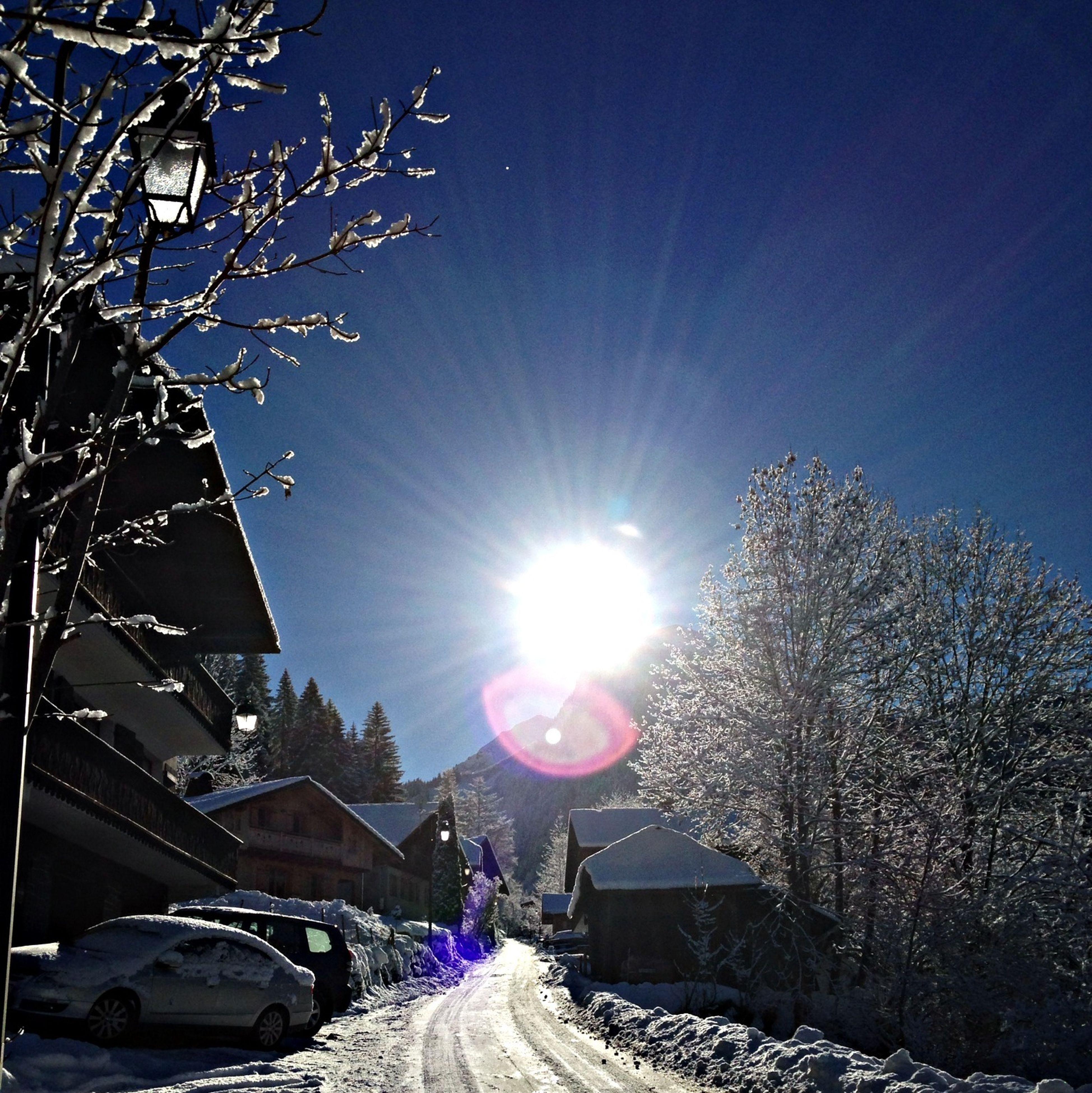 sun, lens flare, clear sky, land vehicle, sunbeam, transportation, car, sunlight, mode of transport, snow, winter, cold temperature, tree, bright, street, sunny, road, season, sky, bare tree