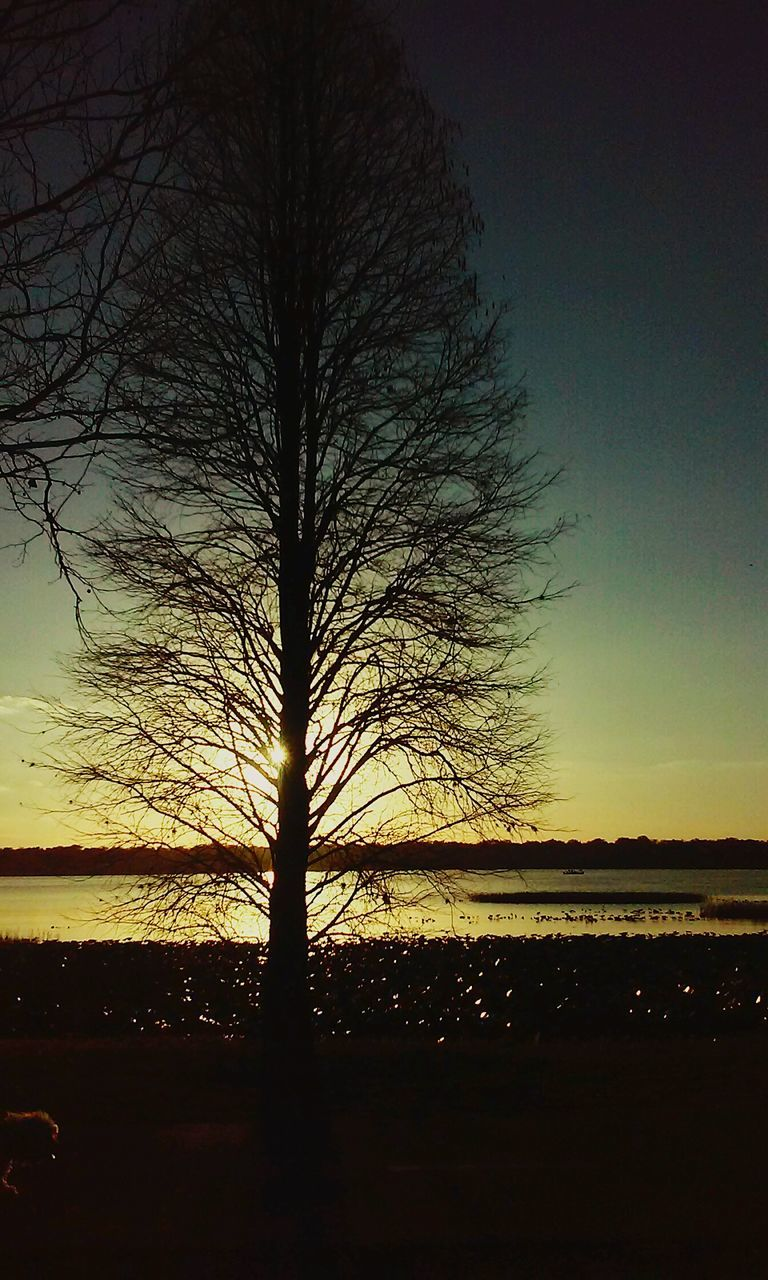 sunset, beauty in nature, silhouette, scenics, nature, tranquility, tranquil scene, tree, sky, bare tree, majestic, no people, outdoors, landscape, cloud - sky, awe, tree trunk, water, day