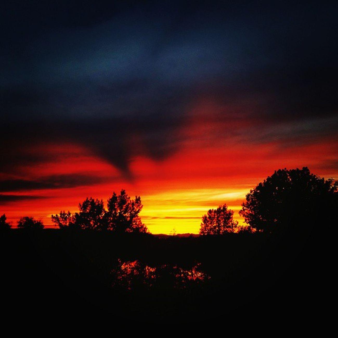 Vscocam Sunset Sun Coucher  de soleil
