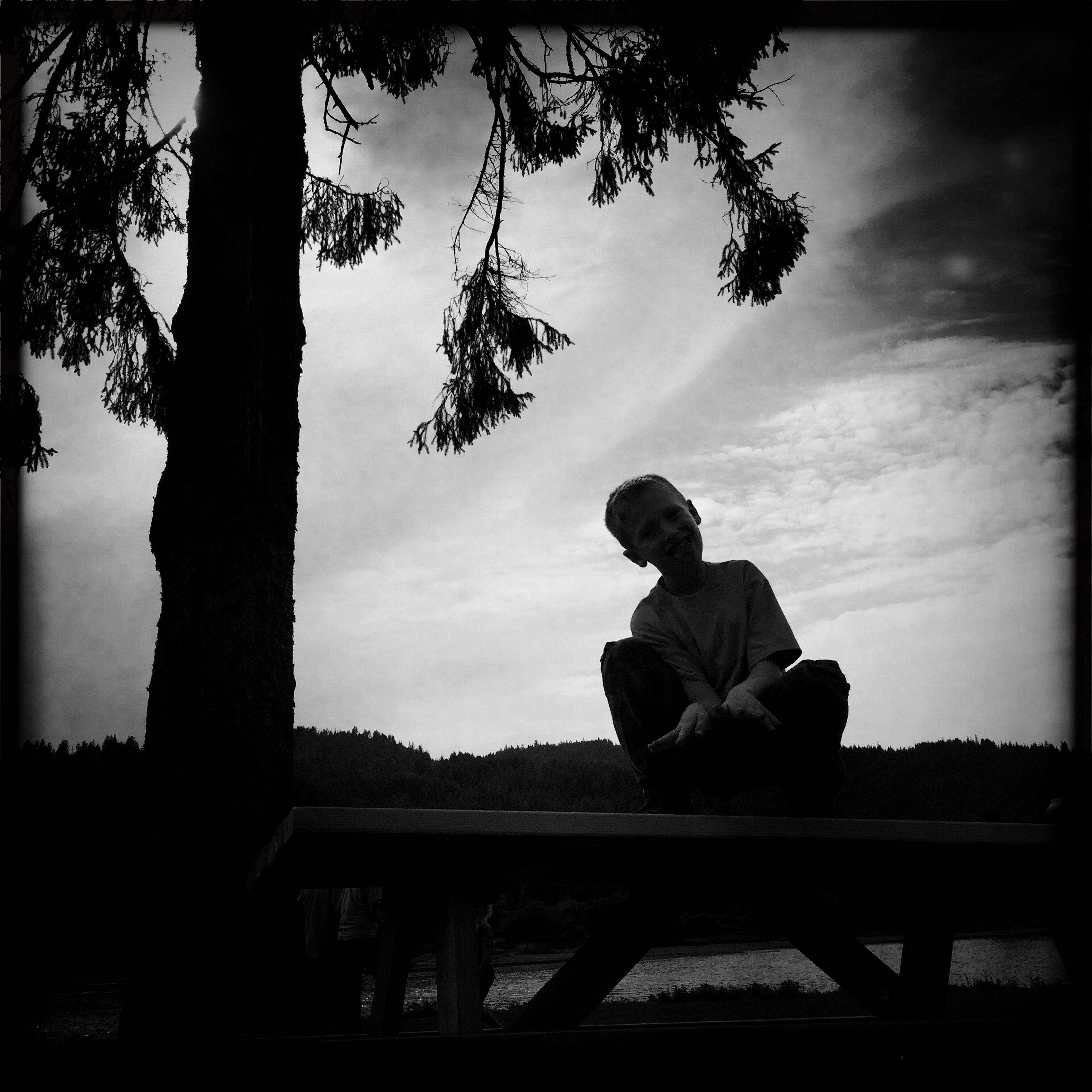 sky, lifestyles, full length, leisure activity, tree, men, silhouette, sitting, rear view, cloud - sky, low angle view, casual clothing, standing, childhood, three quarter length, side view, cloud
