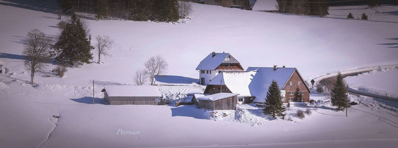 Photographer Fotografia Schwarzwald Neve Taking Photos Winter Phil7lphotos Photooftheday Germany Blackforest Snow Snow ❄ Landscape_photography Nature Photography Landscape_Collection Winter Landscapes Landscapes Landscape Winter Wonderland Wintertime Winter Landscape