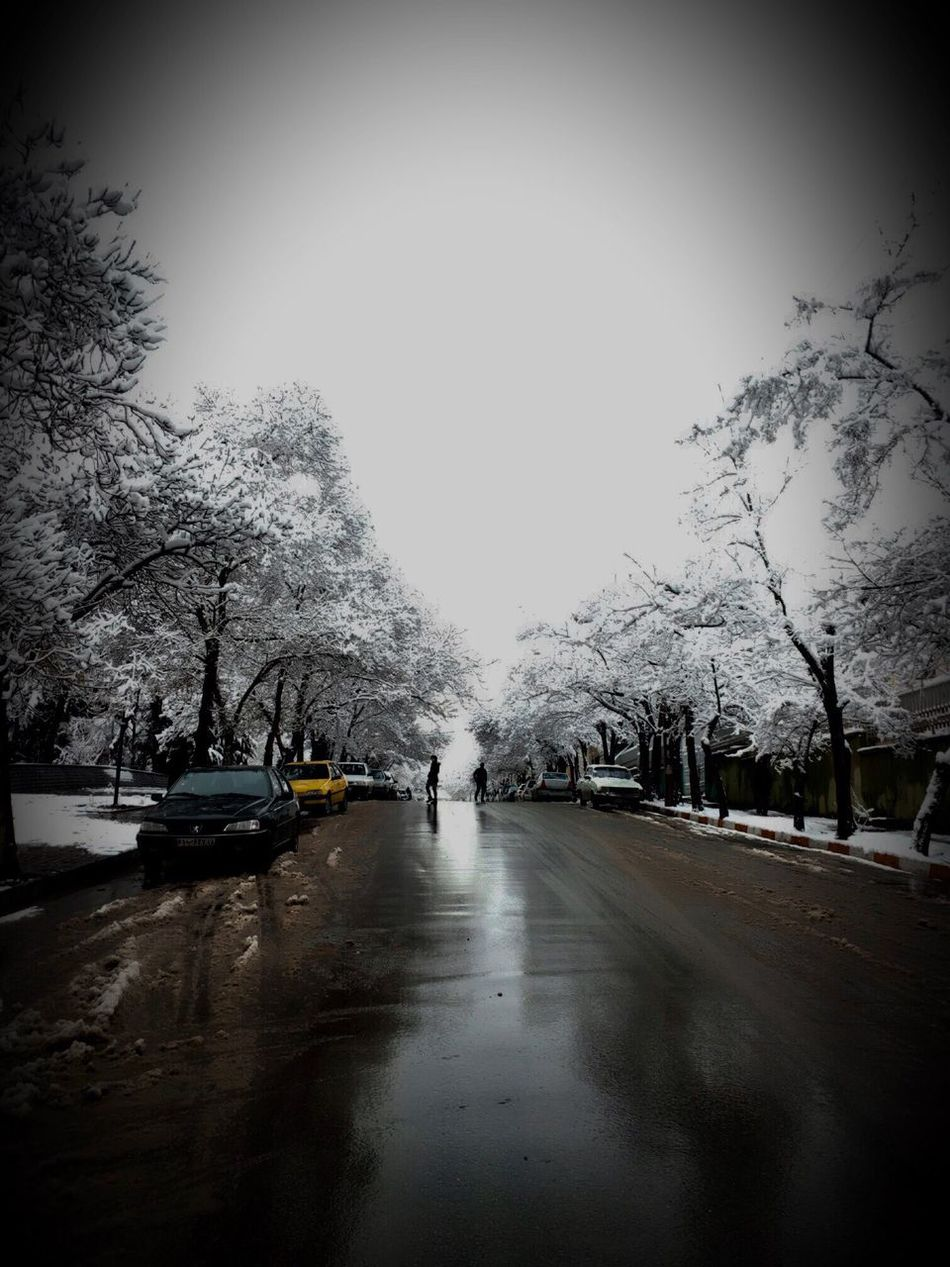 The last snow! Weather Snow ❄ Car Winter Cold Temperature Outdoors Tree Hamedan